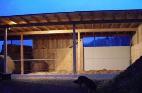 Foto 4 Freie Plätze für ihr Pferd in idyllischer Lage