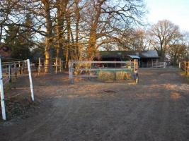 Foto 9 Freie Plätze in pferdegerechter Offenstall-, Bewegungsstallanlage
