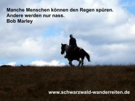 Foto 7 Freiheit, Freundschaft, Abenteuer Leben