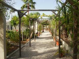 Foto 3 Freistehende Villa mit Paddock in Javea/Spanien