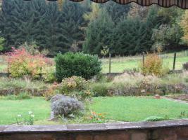 Foto 2 Freistehendes,  großzügiges EFH in idyllischer ruhiger Waldrandlage und sonnigem Flair!