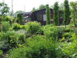 Foto 2 Freizeitgarten