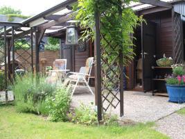 Foto 3 Freizeitgarten