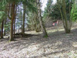 Foto 2 Freizeitgrundstück am südlichen Harzrand