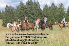 Foto 3 Freizeitreiten, Wanderreiten, Pferdetrekking ab Todtmoos Au
