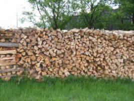 Frisches Reines Buchenbrennholz