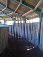 Foto 2 F�hrmaschiene f�r 10 Pferde Durchmesser 28 Meter