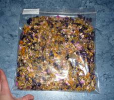 Futter für Landschildkröten & Futterpflanzen und Saatgut
