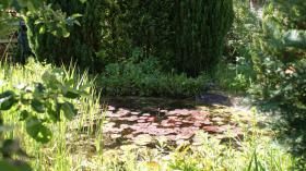 Foto 2 Garten
