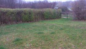 Foto 9 Garten 50 km von Berlin  in Ostende zu verkaufen 865 qm