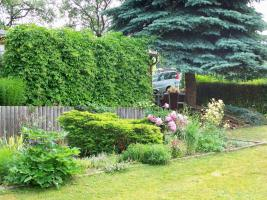 Foto 3 Garten 860qm Eigent. mit Bungalow 40qm