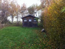 Foto 5 Garten 96 qm auf sicherem und preisgünstigem Pachtland