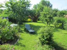 Foto 3 Garten mit Bungalow