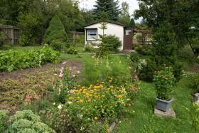 Foto 2 Garten mit Bungalow