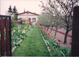 Foto 3 Garten mit Bungalow zu verkaufen