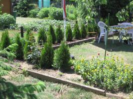 Foto 4 Garten in Erfurt-Gispersleben zu verkaufen