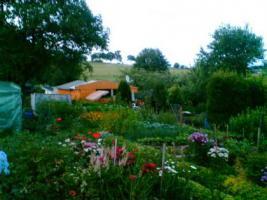 Garten mit Holzhaus Wochenendhaus in Schrebergartenanlage