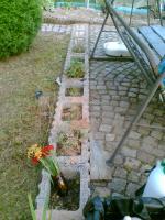 Foto 3 Garten mit Holzhaus Wochenendhaus in Schrebergartenanlage