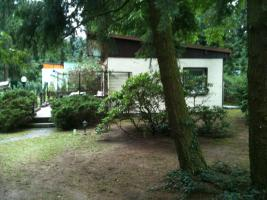 Foto 4 Garten Kleingarten Pachtgrundstück Hoppegarten Müncheberg Wassernähe sehr ruhige Lage nahe Berlin