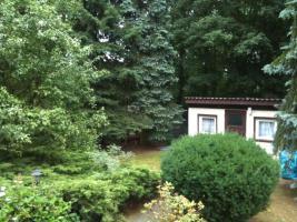 Foto 6 Garten Kleingarten Pachtgrundstück Hoppegarten Müncheberg Wassernähe sehr ruhige Lage nahe Berlin