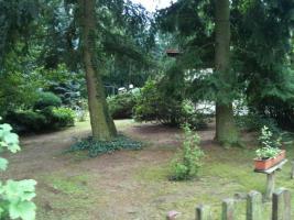 Foto 9 Garten Kleingarten Pachtgrundstück Hoppegarten Müncheberg Wassernähe sehr ruhige Lage nahe Berlin
