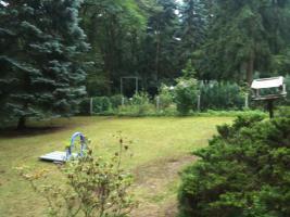 Foto 10 Garten Kleingarten Pachtgrundstück Hoppegarten Müncheberg Wassernähe sehr ruhige Lage nahe Berlin
