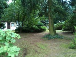 Foto 12 Garten Kleingarten Pachtgrundstück Hoppegarten Müncheberg Wassernähe sehr ruhige Lage nahe Berlin