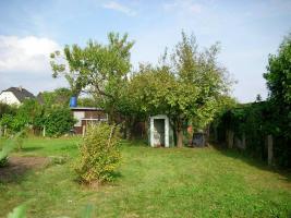Garten im Kleingartenverein Altenhain e. V. (zwischen Naunhof und Grimma / Sachsen) zu verpachten: