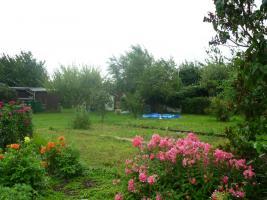 Foto 3 Garten im Kleingartenverein Altenhain e. V. (zwischen Naunhof und Grimma / Sachsen) zu verpachten: