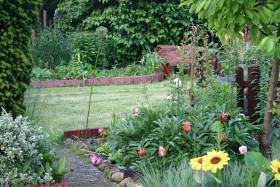 Foto 2 Garten mit Laube in Hannover-Kleefeld