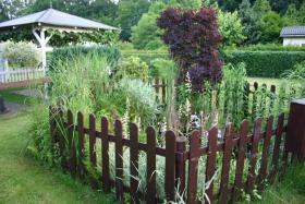 Foto 4 Garten mit Laube in Hannover-Kleefeld