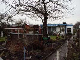 Foto 2 Garten bei Wittichenau (kleine Anlage-keine Pflichtstunden)