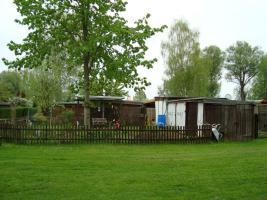Garten in Zehdenick abzugeben