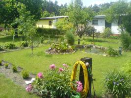 Foto 6 Garten in ruhiger Lage von Cottbus