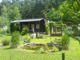 Foto 8 Garten in ruhiger Lage von Cottbus