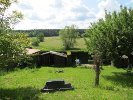 Foto 3 Garten zu verkaufen