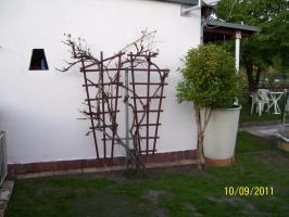 Garten wenig Arbeit Erholungsgarten