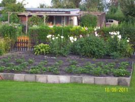 Foto 4 Garten wenig Arbeit Erholungsgarten