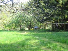 Garten- Wiesengrundstück ruhig gelegen