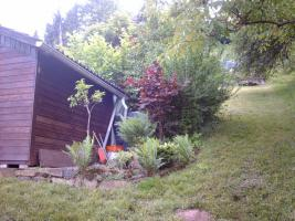 Foto 7 Gartengrundstück