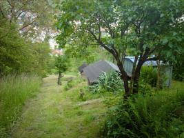 Foto 8 Gartengrundstück