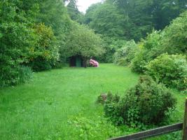 Foto 2 Gartengrundstück