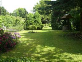 Foto 3 Gartengrundstück