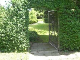 Foto 6 Gartengrundstück