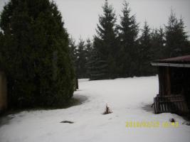 Foto 5 Gartengrundstück 1350m² in 06425 Strenznaundorf zu verkaufen