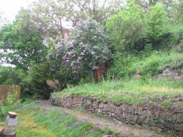 Foto 2 Gartengrundstück Marbach Kapitalanlage ohne Risiko