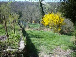 Foto 3 Gartengrundstück zu verkaufen. Sehr ruhige Halbhöhenlage mit Blick hinab zum Wald und auf den Frauenkopf.
