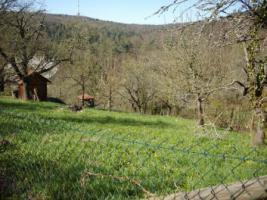 Foto 4 Gartengrundstück zu verkaufen. Sehr ruhige Halbhöhenlage mit Blick hinab zum Wald und auf den Frauenkopf.