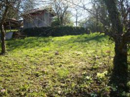 Foto 5 Gartengrundstück zu verkaufen. Sehr ruhige Halbhöhenlage mit Blick hinab zum Wald und auf den Frauenkopf.