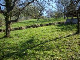 Foto 7 Gartengrundstück zu verkaufen. Sehr ruhige Halbhöhenlage mit Blick hinab zum Wald und auf den Frauenkopf.